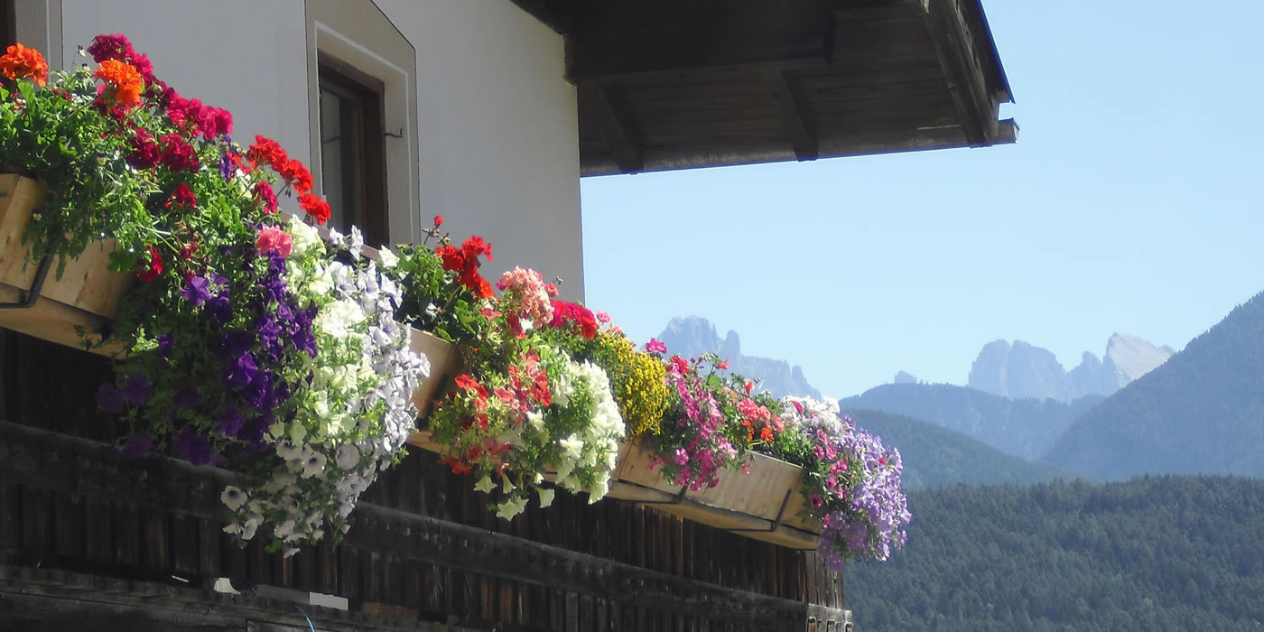 Unterpfaffstall | Farm holidays | Ritten | South Tyrol | Appartements